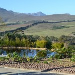 bona_dea_estate_hemel_and_aarde_valle_pond_03