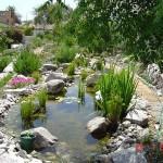 gryls-pond-running1