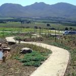 landscaping_dams