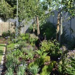 landscaping_south_africa_chb_0011