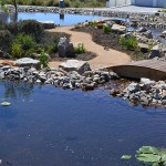 landscaping_south_africa_chb_006