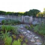 soft_landscaping-_fynbos_001